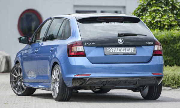 00088095 3 Tuning Rieger