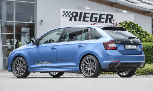 00088095 6 Tuning Rieger