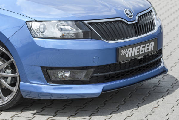 00088096 2 Tuning Rieger