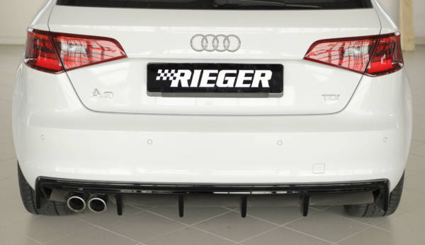 00088100 4 Tuning Rieger