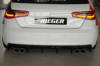 00088101 4 Tuning Rieger