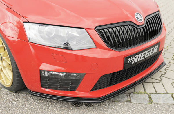 00088106 3 Tuning Rieger