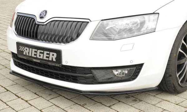 00088107 3 Tuning Rieger