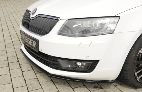 00088107 4 Tuning Rieger