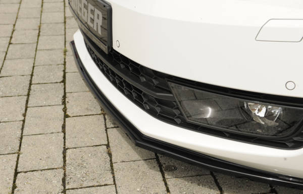 00088107 6 Tuning Rieger