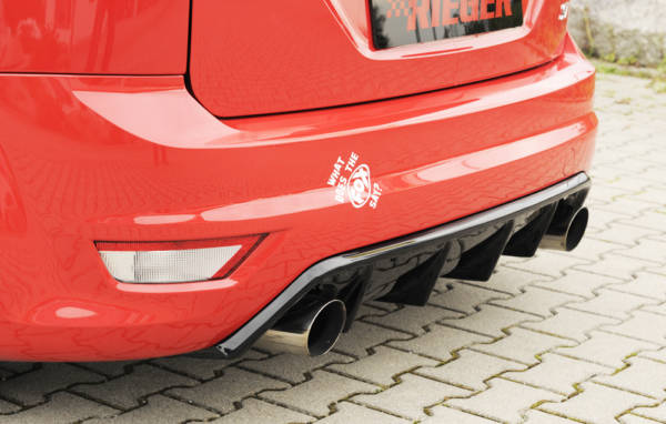 00088118 5 Tuning Rieger