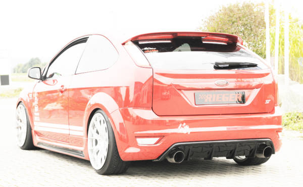 00088118 7 Tuning Rieger