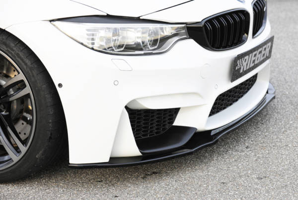00088125 3 Tuning Rieger