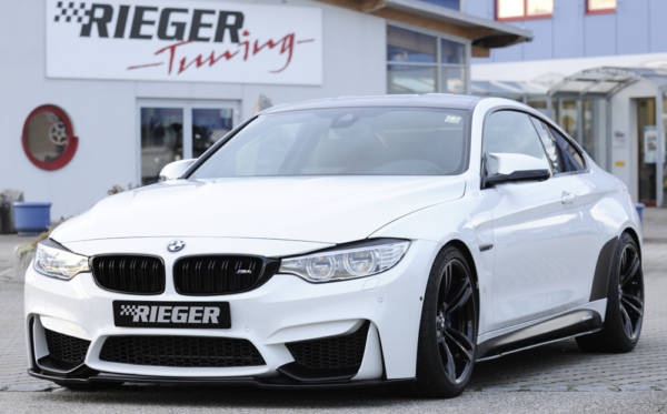 00088125 6 Tuning Rieger