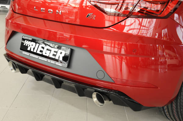 00088133 8 Tuning Rieger