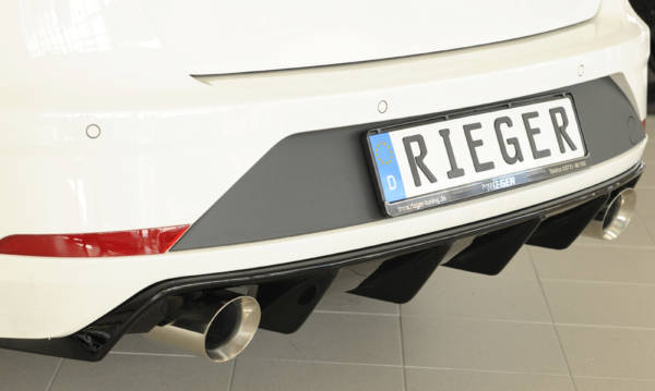 00088135 2 Tuning Rieger
