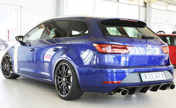 00088137 7 Tuning Rieger
