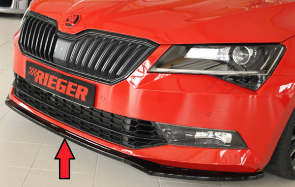 00088149 6 Tuning Rieger