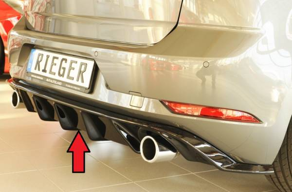 00088160 3 Tuning Rieger