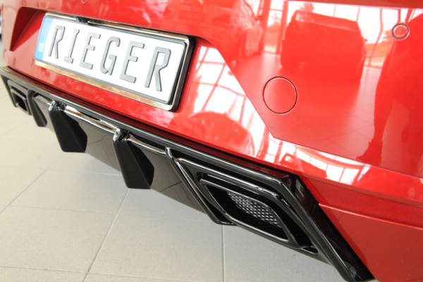 00088166 4 Tuning Rieger