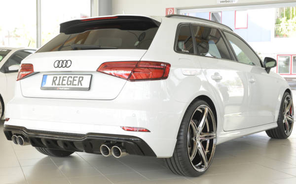 00088182 3 Tuning Rieger