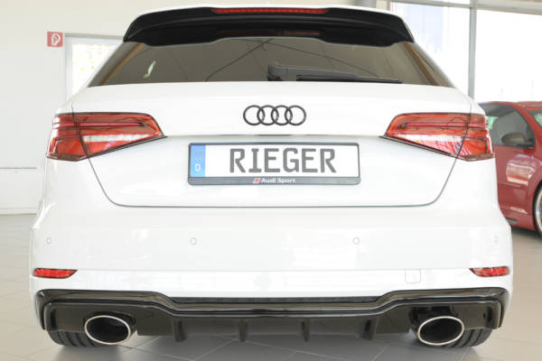 00088183 6 Tuning Rieger