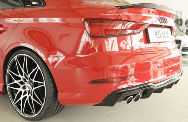 00088184 3 Tuning Rieger