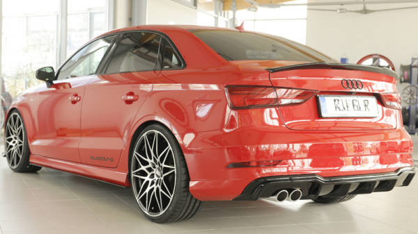 00088184 7 Tuning Rieger