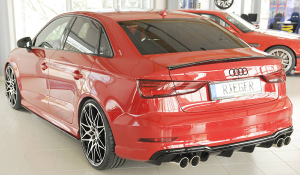 00088186 7 Tuning Rieger