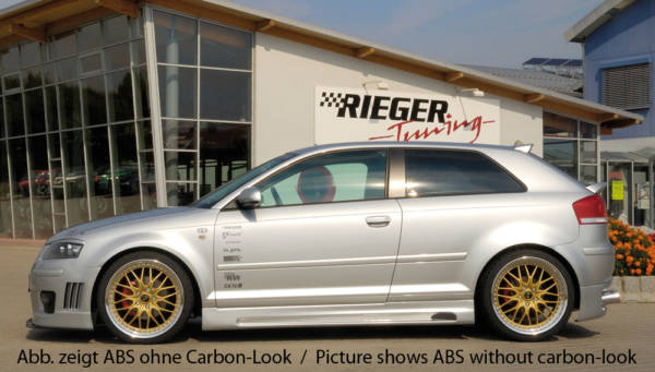 00099008 3 Tuning Rieger