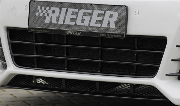 00099024 2 Tuning Rieger