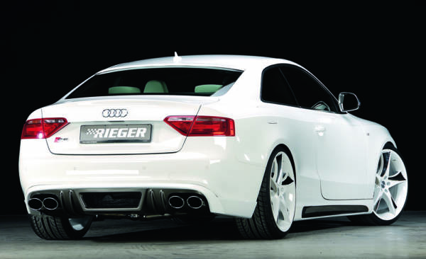00099060 3 Tuning Rieger