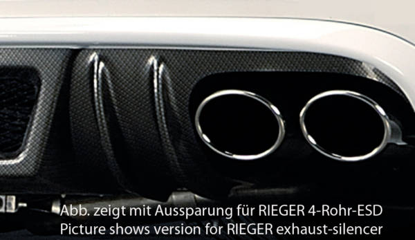 00099074 2 Tuning Rieger