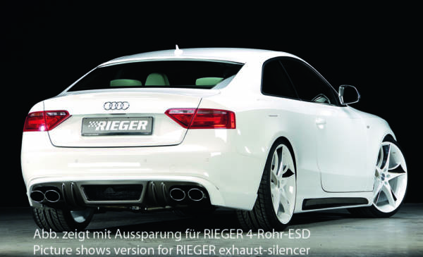 00099077 2 Tuning Rieger
