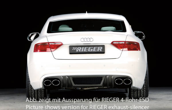 00099077 4 Tuning Rieger