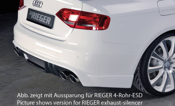 00099081 3 Tuning Rieger