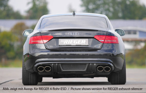 00099089 3 Tuning Rieger