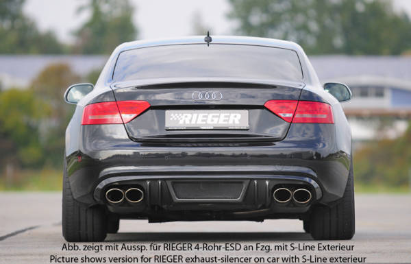 00099092 3 Tuning Rieger