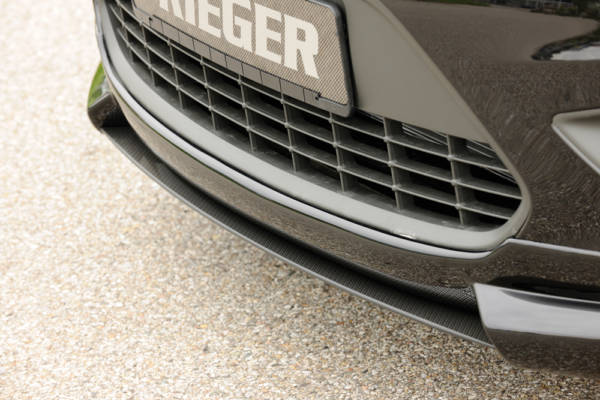 00099119 2 Tuning Rieger