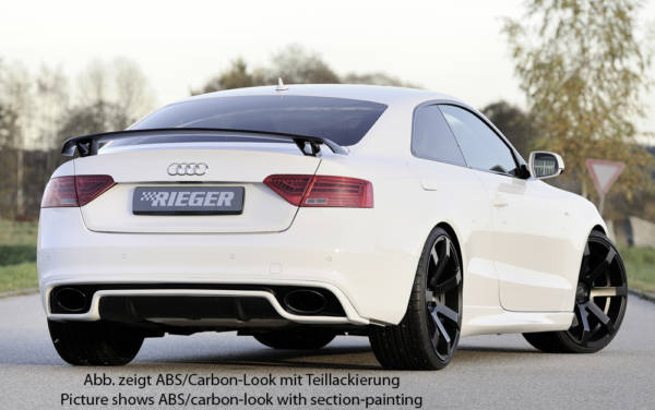 00099126 5 Tuning Rieger