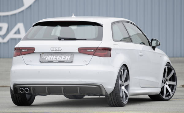 00099142 3 Tuning Rieger