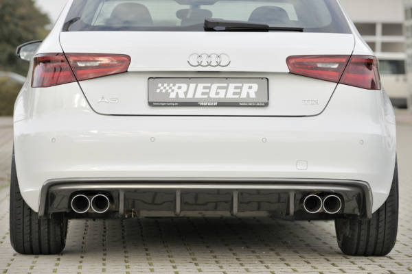 00099143 4 Tuning Rieger