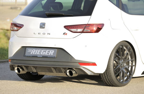 00099186 2 Tuning Rieger
