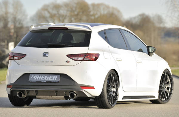 00099186 3 Tuning Rieger