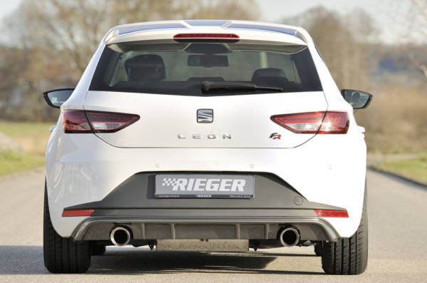 00099186 4 Tuning Rieger