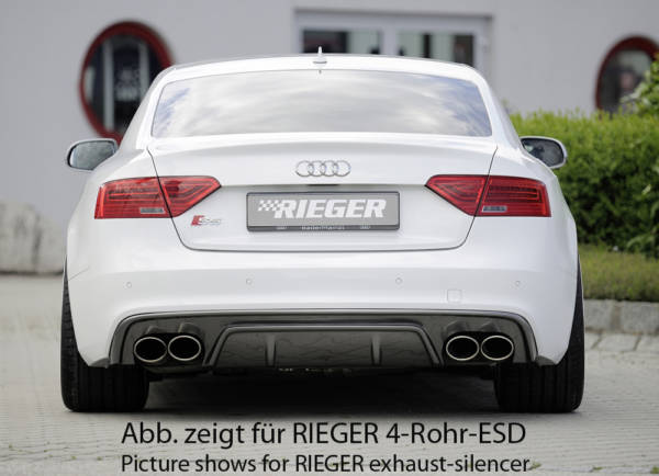 00099196 3 Tuning Rieger