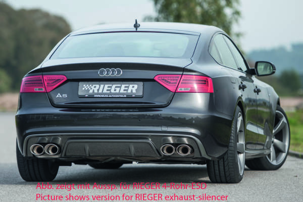 00099222 2 Tuning Rieger