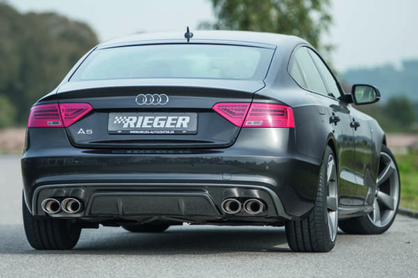 00099224 2 Tuning Rieger