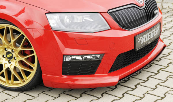 00099239 4 Tuning Rieger
