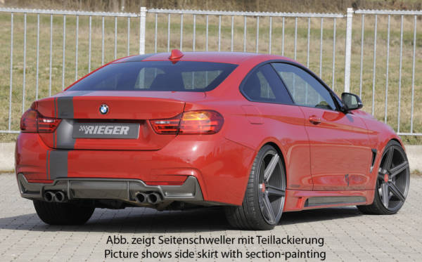 00099245 5 Tuning Rieger