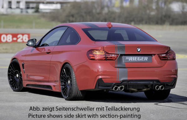 00099245 9 Tuning Rieger