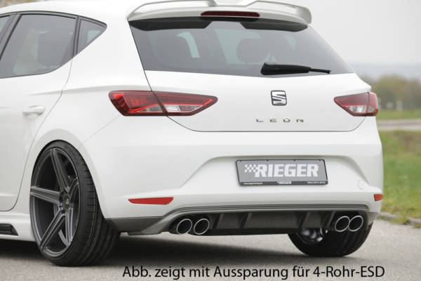 00099247 2 Tuning Rieger