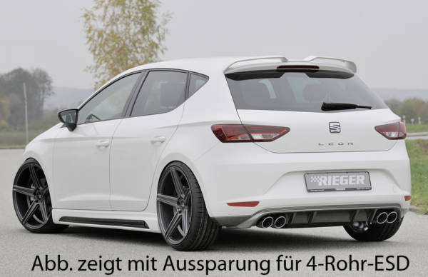 00099247 3 Tuning Rieger