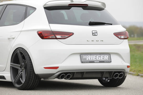 00099248 2 Tuning Rieger