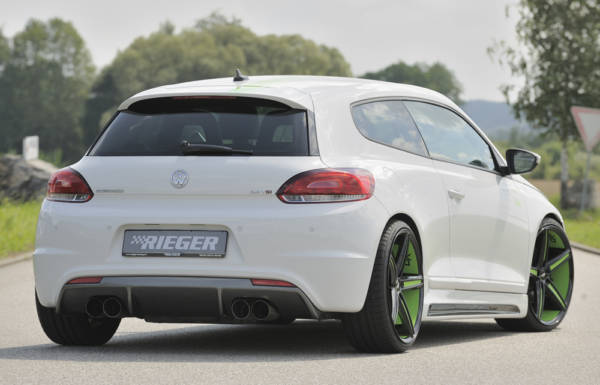 00099256 4 Tuning Rieger